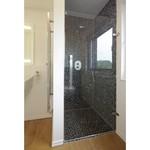 Drehtürbeschlag aus Edelstahl montiert an einer Duschtür